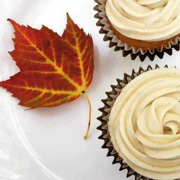 Pumpkin cupcakes with vanilla bean cream cheese frosting